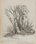 "Miscellaneous:Ephemera, Pencil Drawing of Trees. Signed Edward M. Lynes. July 25, 1881.Cambridge, Massachussets. 6.75"" x 8"". Page appears to be tor..."