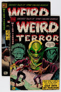 Golden Age (1938-1955):Horror, Weird Terror #8 and 9 Group (Comic Media, 1953-54) Condition:Average VG-.... (Total: 2 Comic Books)