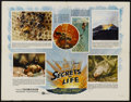 "Movie Posters:Documentary, Secrets of Life (Buena Vista, 1956). Half Sheet (22"" X 28""). Documentary. Directed by James Algar. Narrated by Winston Hible..."