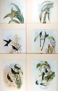 Books:Natural History Books & Prints, [Natural History] Lot of Six Color Lithographs of Various Types of Hummingbirds After Works by H. C. Richter and John Gould. ...
