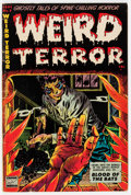Golden Age (1938-1955):Horror, Weird Terror #7 (Comic Media, 1953) Condition: VG+....