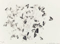 Prints:Contemporary, SUSAN ROTHENBERG (American, b. 1945). Moths and Peonies(from the portfolio Artists for Obama), 2012. Photogravurei...