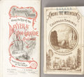 Advertising:Paper Items, LOT OF TWO DENVER RIO GRANDE ADVERTISING PAMPHLETS 1870s-1880s.Panoramic Views along the line of the Denver & Rio Grande Ra...(Total: 1 Item)