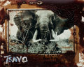 Photographs, PETER BEARD (American, b. 1938). Tsavo, 1965. Unique polaroid with blood and ink, 1998. 4 x 5 inches (10.2 x 12.7 cm). T... (Total: 2 Items)