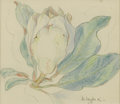 Paintings, MABEL FAIRFAX KARL (1901-1990). Magnolia Bud, 1930's. Crayon. 6.5in. x 7.5in.. Signed lower right. ...