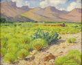 Texas:Early Texas Art - Impressionists, HARRY ANTHONY DEYOUNG (1893-1956). Chisos Mountain Country,1930's. Oil on canvasboard. 16in. x 20in.. Signed lower righ...
