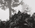 Photographs, ANSEL ADAMS (American, 1902-1984). Tree, Stump and Mist, Northern Cascades, Washington, from Portfolio VII, 1958. Gelati...