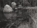 Photographs:20th Century, ANSEL ADAMS (American, 1902-1984). Rock, Dogwood, River, Shrub,Yosemite National Park, California, 1976. Original Polar...