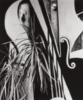 Photographs:20th Century, BRETT WESTON (American, 1911-1993). Untitled (Plants andShapes). Gelatin silver. 12-3/4 x 10-5/8 inches (32.4 x 27.0cm...