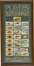 Advertising:Tobacciana, Set of 25 Player's Cigarette Cards Featuring Fish. This set of 25cards is handsomely framed on a mat which states the name ...(Total: 25 )