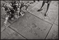 GENE ANTHONY (American, 20th Century) Marilyn Monroe's Handprints at Grauman's Chinese Theater, Hollywood</