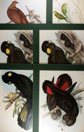 Books:Natural History Books & Prints, John Gould. Group of Six Elephant Folio Reprints. Uniformly matted to an overall size of 18 x 24 inches. Near fine. ...