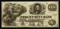 Obsoletes By State:Ohio, Cleveland, OH- The Forest City Bank Spurious $10 ?, ? 1858 S5 Wolka0732-17. ...