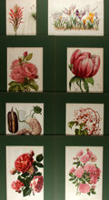 Books:Natural History Books & Prints, Group of Eight Chromolithographs Depicting Flowers. Uniformly matted to an overall size of 10.25 x 13.5 inches. Some have cr...
