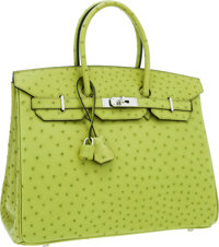 Hermes 35cm Vert Anis Ostrich Birkin Bag with Palladium Hardware