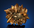 Minerals:Cabinet Specimens, GYPSUM. Red River Floodway, Winnipeg, Manitoba, Canada. ...(Total: 2 Items)