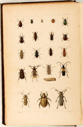 Books:Natural History Books & Prints, Thaddeus William Harris. A Treatise on Some of the Insects Injurious to Vegetation. Boston: William White, 1862. Thi...