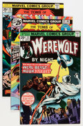 Bronze Age (1970-1979):Horror, Tomb of Dracula/Werewolf by Night Group (Marvel, 1974-78)Condition: Average VF/NM.... (Total: 25 Comic Books)