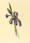 Fine Art - Work on Paper:Print, DAVID MICHAEL BATES (American, b. 1952). Study for Iris,1998. Lithograph in colors. 13-3/4 x 9-3/4 inches (34.9 x 24.8 ...