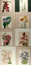 Books:Natural History Books & Prints, Group of Eight Chromolithographs Depicting Flowers. Three have hand-coloring. Uniformly matted to an overall size of 10 x 13...