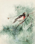 Mainstream Illustration, LEO MOELLER (German/American, b. 1867). Bird in Branches,1891. Watercolor on board. 13.75 x 11 in.. Initialed and dated...
