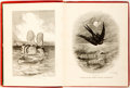 Books:Natural History Books & Prints, Mary and Elizabeth Kirby. The Sea and Its Wonders. London: T. Nelson and Sons, 1875. Illustrated with engravings. Pu...