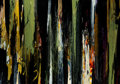 Paintings, BOB NUGENT (American, b. 1947). Pica Pau (Woodpecker), 2002. Oil on canvas. 50 x 70 inches (127 x 177.8 cm). Initialed, ...