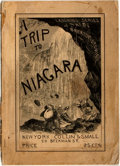 Books:Americana & American History, [Americana] Bricktop. A Trip to Niagara Falls. Collin &Small Publishers, 1876. First edition. Octavo. Illustrat...
