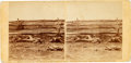 Photography:Stereo Cards, [Battle of Antietam]. Stereoview: Confederate Soldiers As They Fell at the Battle of Antietam....