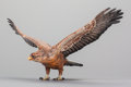 Paintings, AN AUSTRIAN COLD PAINTED BRONZE FIGURE OF AN EAGLE, circa 1910. 7 x 15 x 8 inches (17.8 x 38.1 x 20.3 cm). ...