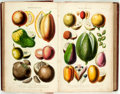 Books:Natural History Books & Prints, William Rhind. A History of the Vegetable Kingdom. London: Blackie and Son, [1860]. Includes several illustrations, ...