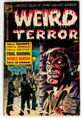 Golden Age (1938-1955):Horror, Weird Terror #13 (Comic Media, 1954) Condition: GD/VG....