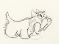 Animation Art:Production Drawing, Lady and the Tramp Jock Production Drawing Animation Art(Walt Disney, 1955)....