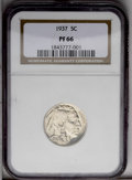 Proof Buffalo Nickels: , 1937 5C PR66 NGC. Fully struck with glassy fields, a light coatingof milky toning, and faint greenish accents on each side...