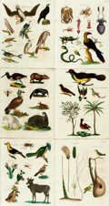 Books:Natural History Books & Prints, Oliver Goldsmith. Six Hand-Colored Engravings from A History of the Earth and Animated Nature. London: R. Edward...