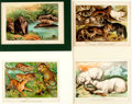 Books:Natural History Books & Prints, Large Group of Color Lithographs Depicting Animals. Most matted. Various sizes. Very good. . ...