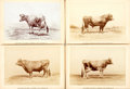 "Books:Americana & American History, Group of Four Animal Portraits of Cattle. Philadelphia: Schreiber& Sons, [n.d., ca. 1880]. Measures 5.5"" x 4"". Gilt edges. ..."
