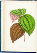 Books:Natural History Books & Prints, Shirley Hibberd. New and Rare Beautiful-Leaved Plants. London: Bell and Daldy, 1870. With 54 colored plates. Publish...