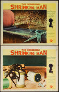 "Movie Posters:Science Fiction, The Incredible Shrinking Man (Universal International, 1957). LobbyCards (2) (11"" X 14""). Science Fiction.. ... (Total: 2 Items)"