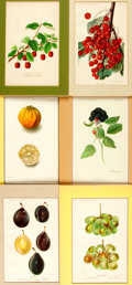 Books:Prints & Leaves, Six Chromolithographs Depicting Different Kinds of Fruit. Publishedby the U.S. Department of Agriculture, 1890-1909. Colorf...