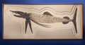 "Fossils:Fish, ""ONE-OF-A-KIND"" PREHISTORIC SWORDFISH. Protosphyraenanitida. Cretaceous. Niobrara Formation, Smoky HillChalk. ..."