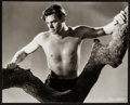"Movie Posters:Adventure, Johnny Weissmuller as Tarzan (MGM, 1933). Portrait Photo (11"" X13.75""). Adventure.. ..."