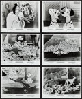"Movie Posters:Animation, 101 Dalmatians & Others Lot (Buena Vista, R-1985). Photos (22)(8"" X 10""). Animation.. ... (Total: 22 Items)"