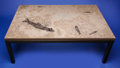 Lapidary Art:Tables / Tabletops, FOSSIL FISH COFFEE TABLE. Notogoneus osculus & Knightiaeocaena. Eocene, Green River Formation.Wyoming, USA... (Total: 2 Items)