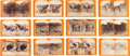 Photography:Stereo Cards, Arizona and Pueblo Indian Stereoviews by E. O. Beaman....