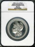 Expositions and Fairs, 1893 World's Columbian Exposition, High Relief Liberty Head, MS63 Prooflike NGC. Eglit-101. Aluminum, 90 mm....