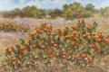Texas:Early Texas Art - Modernists, ROBERT HAMMAN (American, 20th Century). Cacti Blooming in TexasHill Country. Oil on canvas. 10 x 15 inches (25.4 x 38.1...