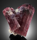 """Minerals:Cabinet Specimens, ELBAITE (TOURMALINE): """"THE BEER CANS"""". Himalaya Mine, Gem Hill,Mesa Grande District, San Diego Co., California, USA. ...(Total: 2 Items)"""