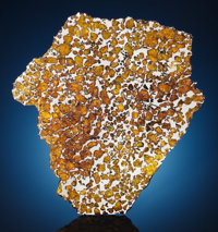 IMILAC METEORITE - LARGE COMPLETE SLICE WITH EXTRATERRESTRIAL PERIDOT Pallasite - PMG <