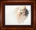 Art, Robert Bateman. Chief - American Bison (1997). 27 x 20 Inches.Print on paper; SN211 of 950. Condition: Very good . Accompan...